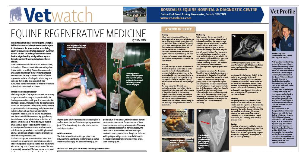 Equine Regenerative Medicine