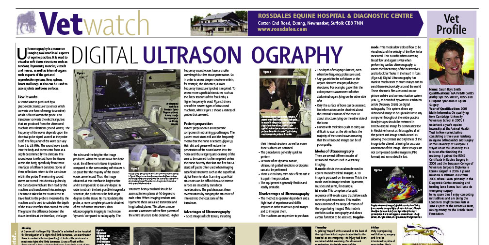Digital Ultrasonography