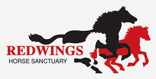 Redwings Sanctuary